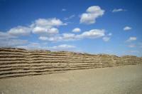 漢長城遺跡