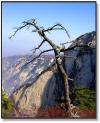 中国秦嶺山脈の東側に聳える名山、陝西省華陰県にあり、花崗岩よりなりる。五岳中の西岳。「華山天下の険」といわれ、雄大さと険しさで古くから広く知られている、最高峰は2100メートル、山の至る所に断崖絶壁があり、山道が険しい、多くの人は華山に登ることを探検と呼び、途中で恐れを成して引き返す者も多い。華山は古来より一本の道しかない、華山は険しさが特色で、「険」と云う文字があちこちにあります。